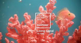Living Coral، رنگ سال 2019